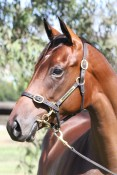 EQUIANO (FR) x HIDDEN CHARGES