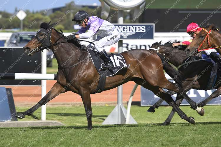 956266a91539 Running over 2000m and ridden beautifully by top jockey Kerrin McEvoy